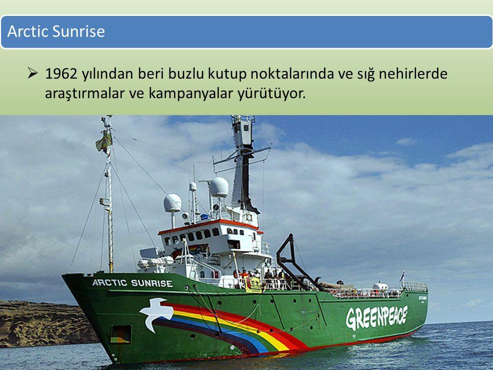 Arctic Sunrise  1962 yılından beri buzlu kutup noktalarında ve sığ nehirlerde araştırmalar ve kampanyalar yürütüyor.