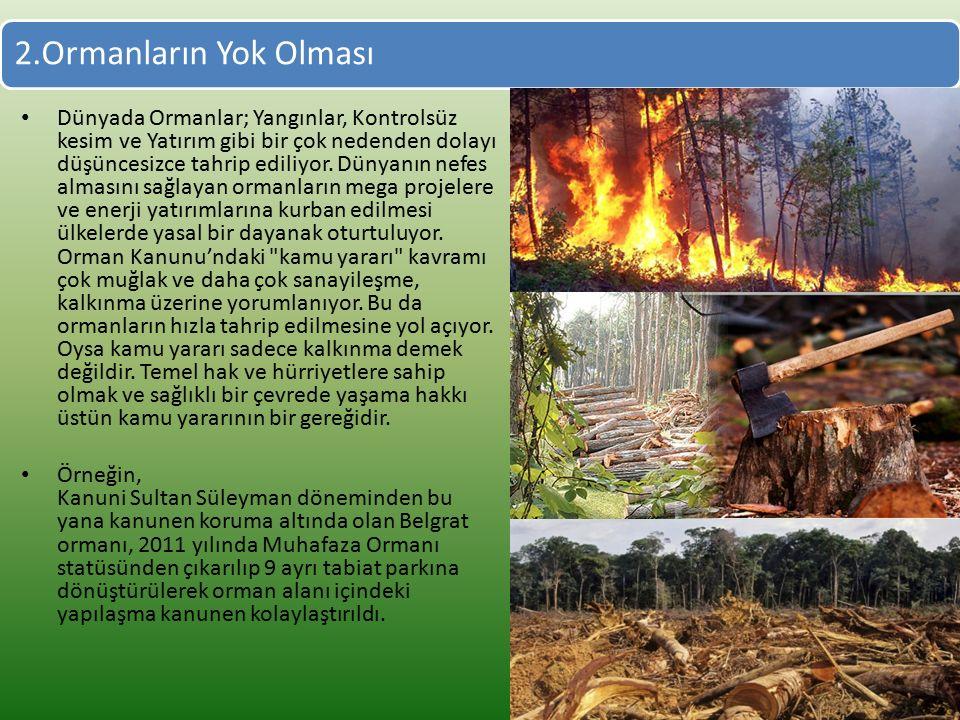 2.Ormanların Yok Olması Dünyada Ormanlar; Yangınlar, Kontrolsüz kesim ve Yatırım gibi bir çok nedenden dolayı düşüncesizce tahrip ediliyor.