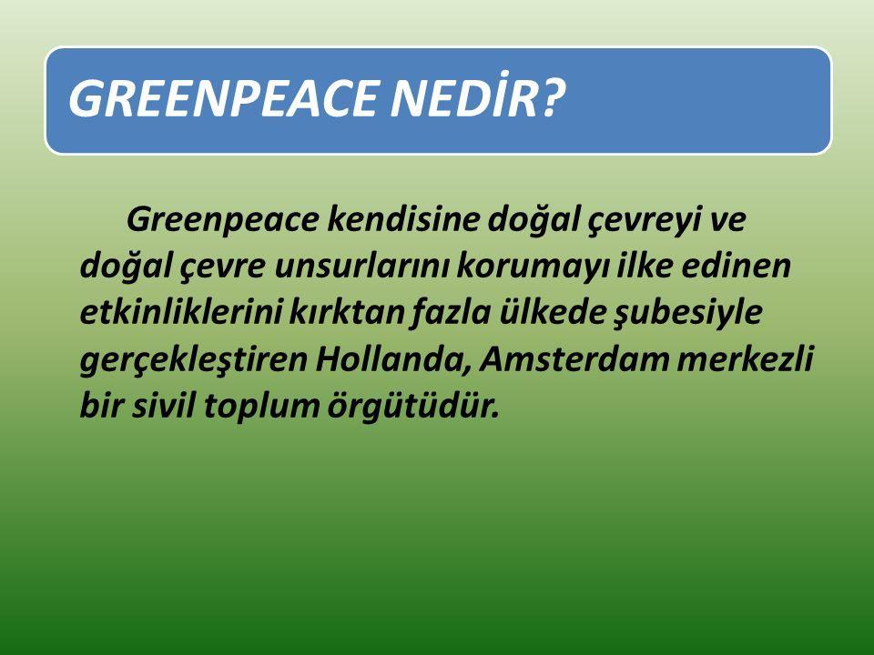 GREENPEACE NEDİR.