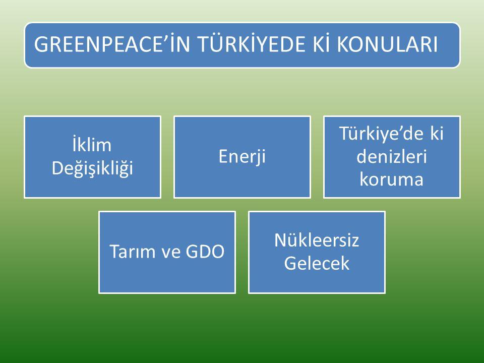 GREENPEACE'İN TÜRKİYEDE Kİ KONULARI İklim Değişikliği Enerji Türkiye'de ki denizleri koruma Tarım ve GDO Nükleersiz Gelecek