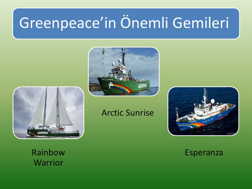 Greenpeace'in Önemli Gemileri Rainbow Warrior Arctic Sunrise Esperanza