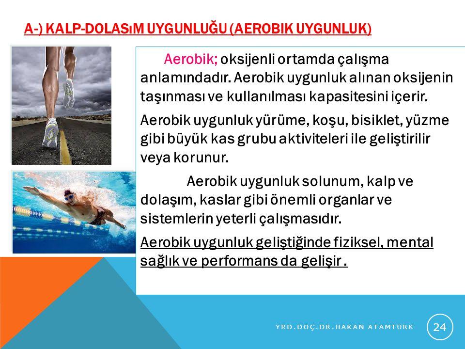 A-) KALP-DOLASıM UYGUNLUĞU (AEROBIK UYGUNLUK) Aerobik; oksijenli ortamda çalışma anlamındadır. Aerobik uygunluk alınan oksijenin taşınması ve kullanıl