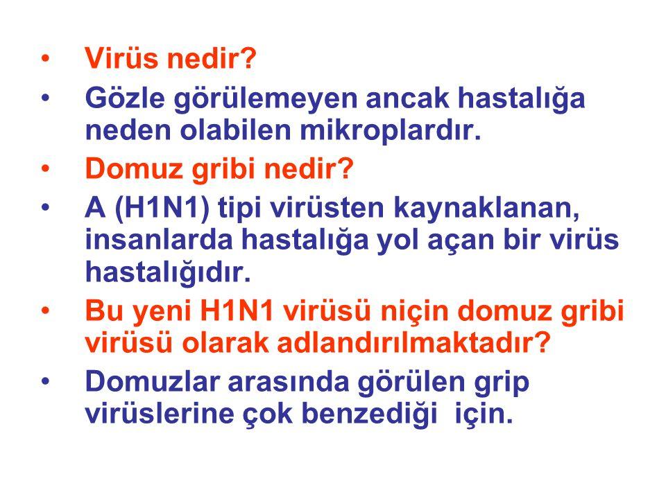 Virüs nedir? Gözle görülemeyen ancak hastalığa neden olabilen mikroplardır. Domuz gribi nedir? A (H1N1) tipi virüsten kaynaklanan, insanlarda hastalığ