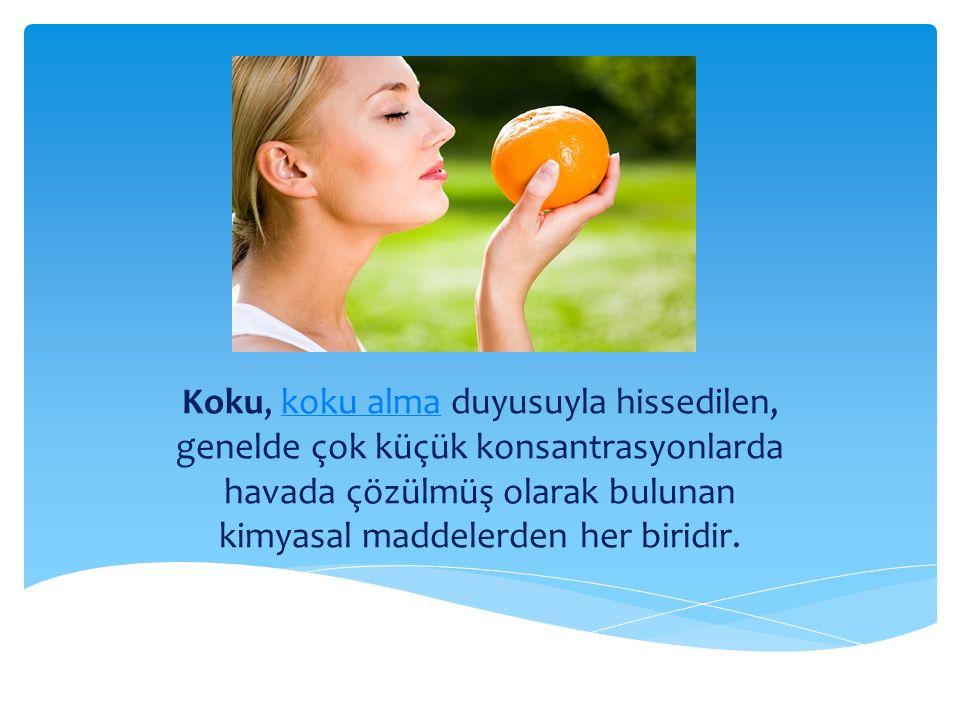Koku, koku alma duyusuyla hissedilen, genelde çok küçük konsantrasyonlarda havada çözülmüş olarak bulunan kimyasal maddelerden her biridir.koku alma