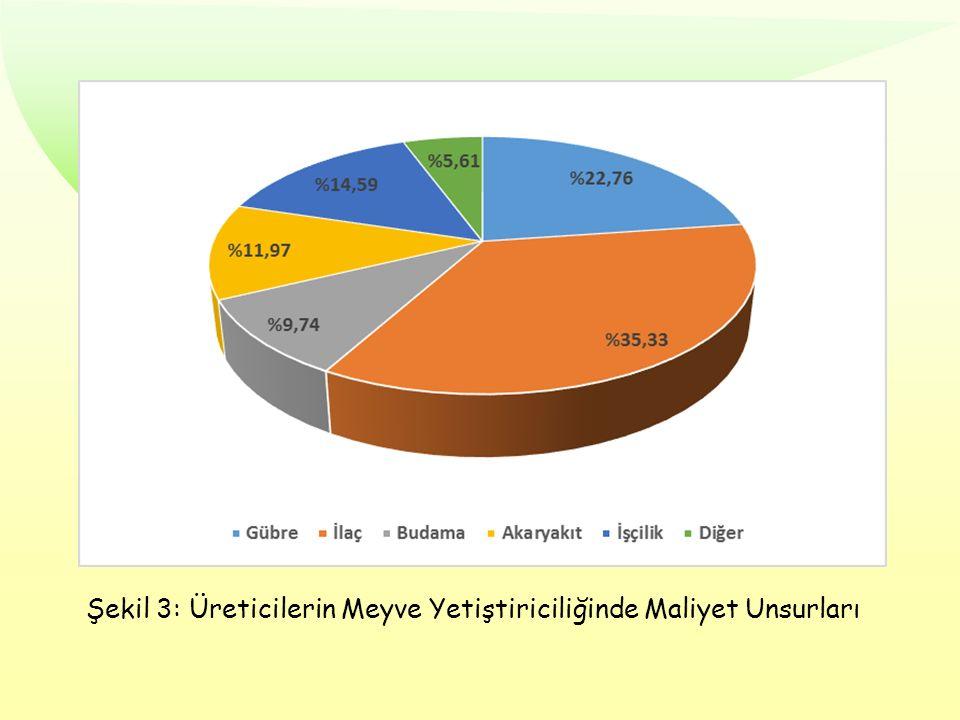 Şekil 3: Üreticilerin Meyve Yetiştiriciliğinde Maliyet Unsurları
