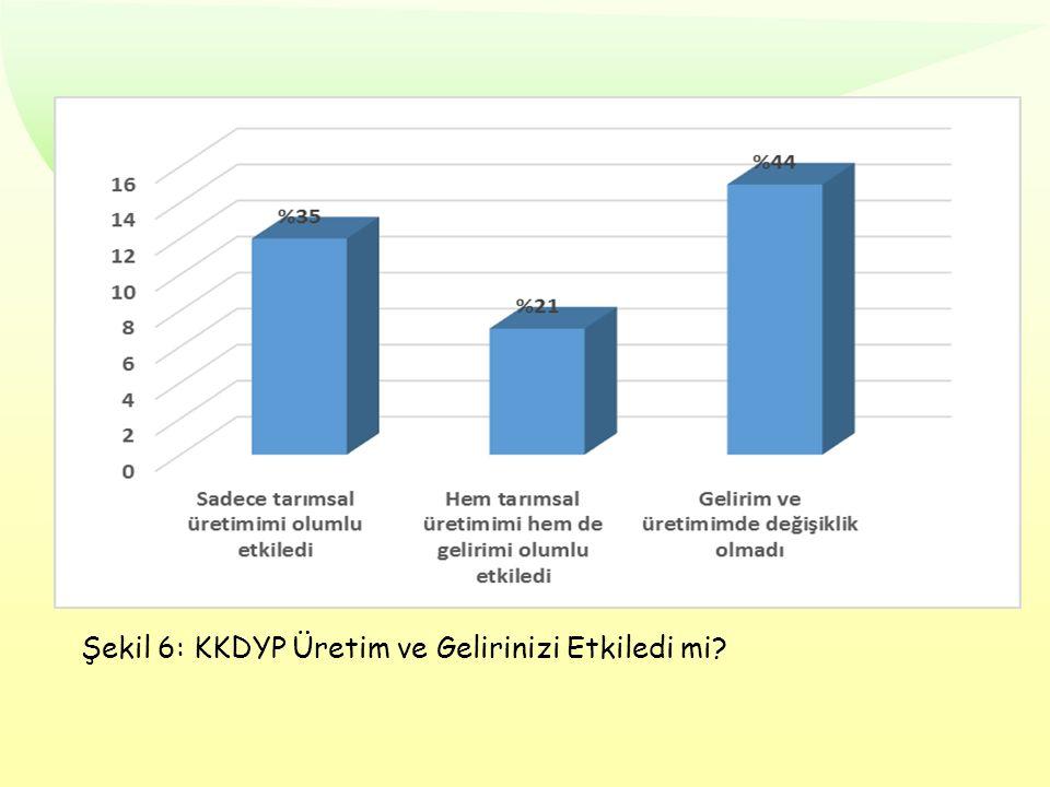 Şekil 6: KKDYP Üretim ve Gelirinizi Etkiledi mi?
