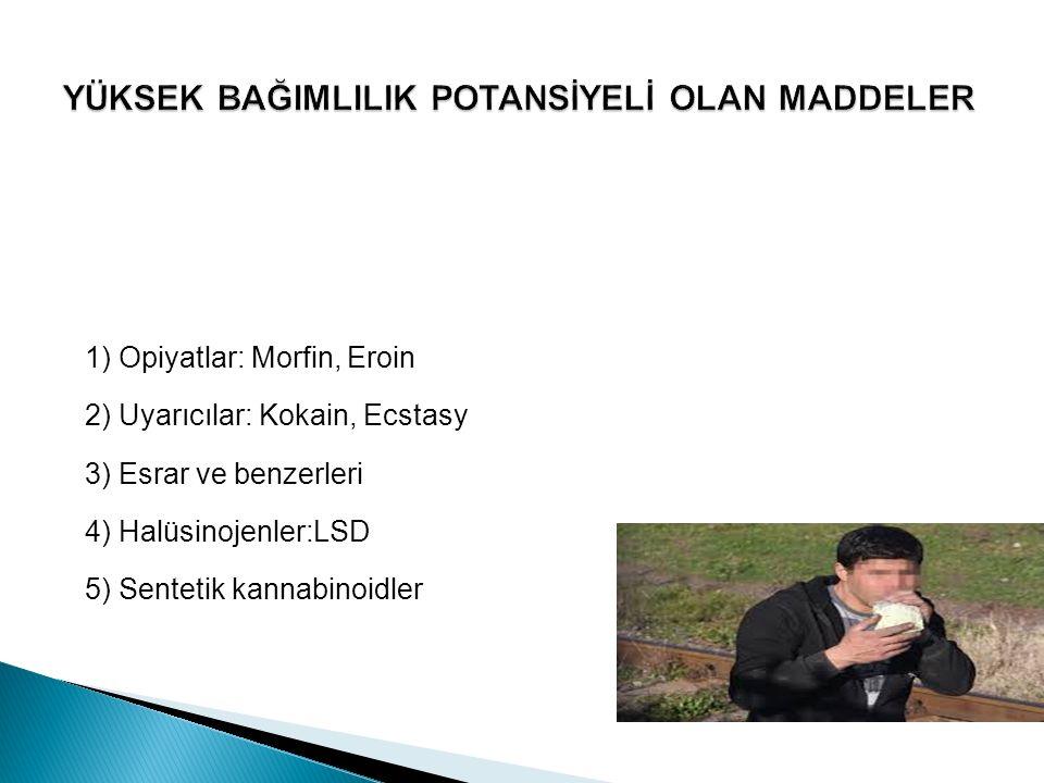  MADDE KULLANIMI ÖYKÜSÜ  Lise 2.