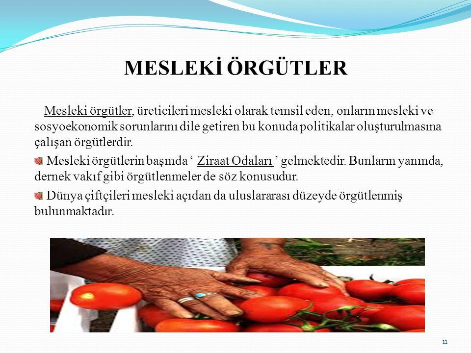 Türkiye Ziraat Odaları Birliği'nin de üyesi olduğu Uluslararası Tarım Üreticileri Federasyonu (IFAP) 1946 yılından beri, 80 ülkeden 600 milyon çiftçinin ortağı olduğu 115 örgütün ortak kuruluşudur.