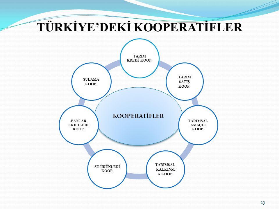 TÜRKİYE'DEKİ KOOPERATİFLER 23 KOOPERATİFLER TARIM KREDİ KOOP.