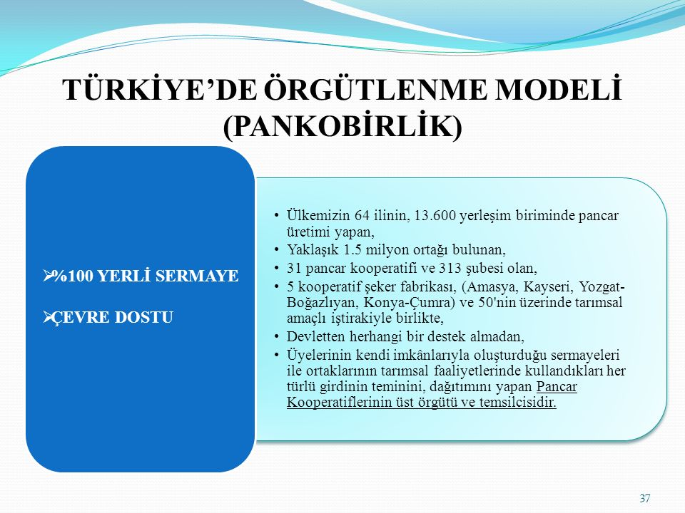 TÜRKİYE'DE ÖRGÜTLENME MODELİ (PANKOBİRLİK) Ülkemizin 64 ilinin, 13.600 yerleşim biriminde pancar üretimi yapan, Yaklaşık 1.5 milyon ortağı bulunan, 31 pancar kooperatifi ve 313 şubesi olan, 5 kooperatif şeker fabrikası, (Amasya, Kayseri, Yozgat- Boğazlıyan, Konya-Çumra) ve 50 nin üzerinde tarımsal amaçlı iştirakiyle birlikte, Devletten herhangi bir destek almadan, Üyelerinin kendi imkânlarıyla oluşturduğu sermayeleri ile ortaklarının tarımsal faaliyetlerinde kullandıkları her türlü girdinin teminini, dağıtımını yapan Pancar Kooperatiflerinin üst örgütü ve temsilcisidir.