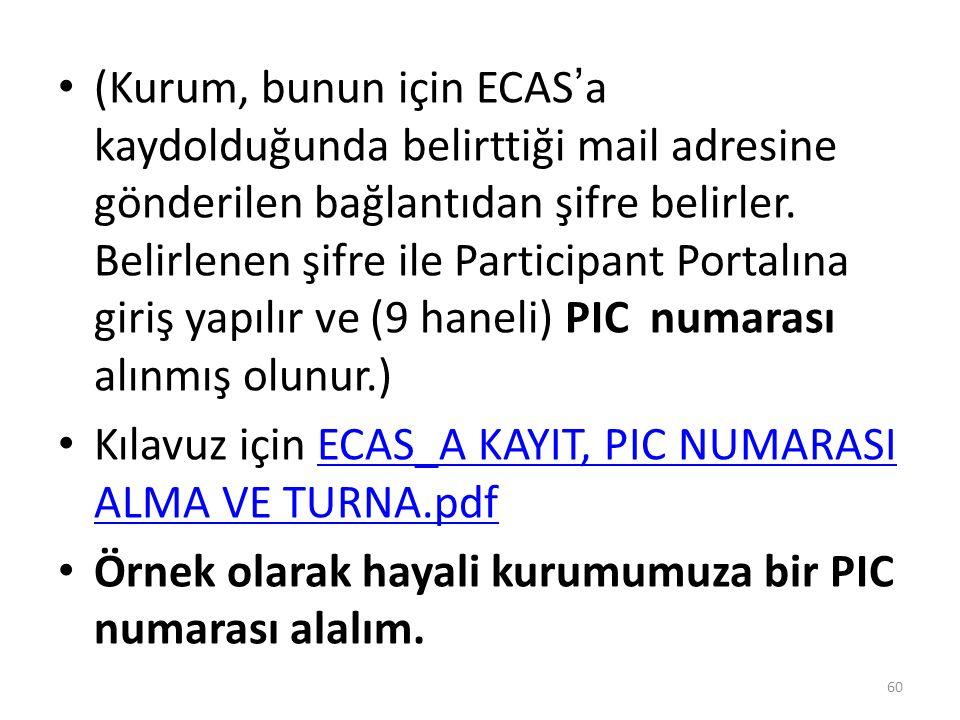 (Kurum, bunun için ECAS'a kaydolduğunda belirttiği mail adresine gönderilen bağlantıdan şifre belirler.