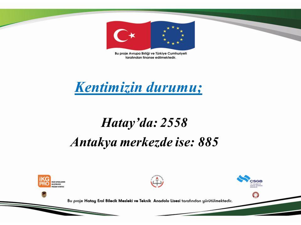 Kentimizin durumu; Hatay'da: 2558 Antakya merkezde ise: 885