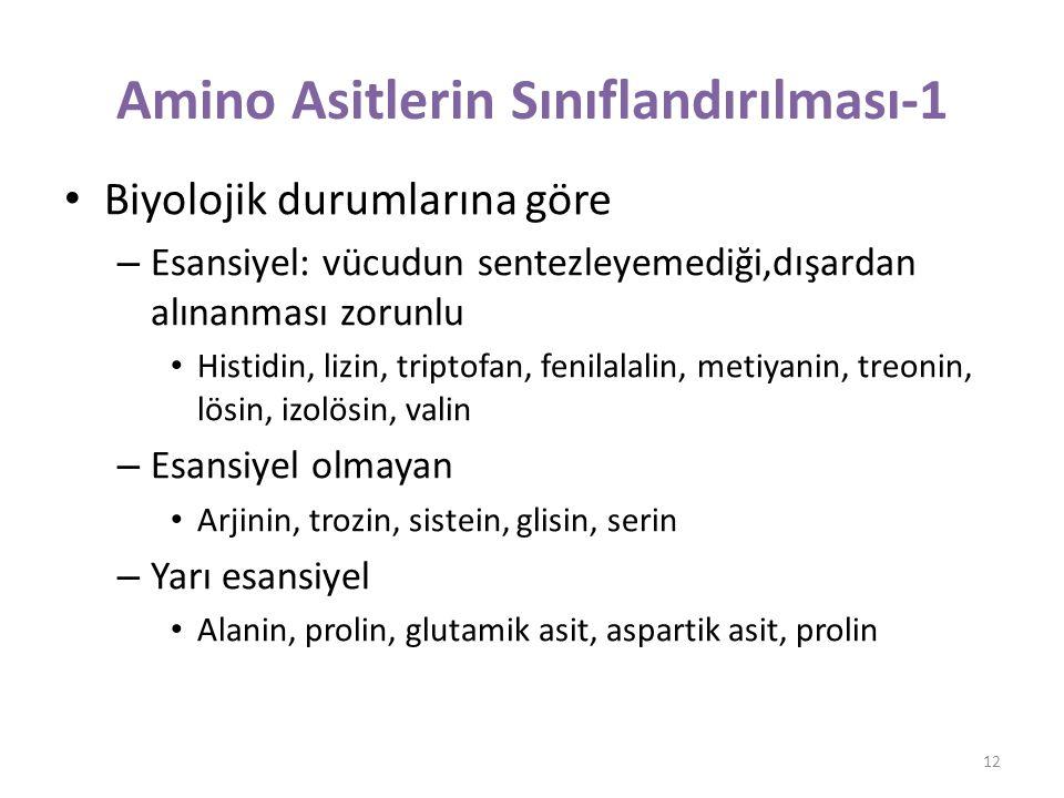 Amino Asitlerin Sınıflandırılması-1 Biyolojik durumlarına göre – Esansiyel: vücudun sentezleyemediği,dışardan alınanması zorunlu Histidin, lizin, triptofan, fenilalalin, metiyanin, treonin, lösin, izolösin, valin – Esansiyel olmayan Arjinin, trozin, sistein, glisin, serin – Yarı esansiyel Alanin, prolin, glutamik asit, aspartik asit, prolin 12