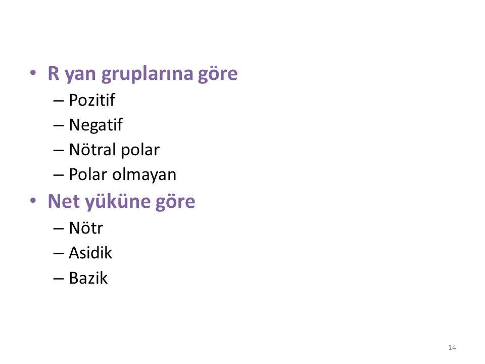 R yan gruplarına göre – Pozitif – Negatif – Nötral polar – Polar olmayan Net yüküne göre – Nötr – Asidik – Bazik 14
