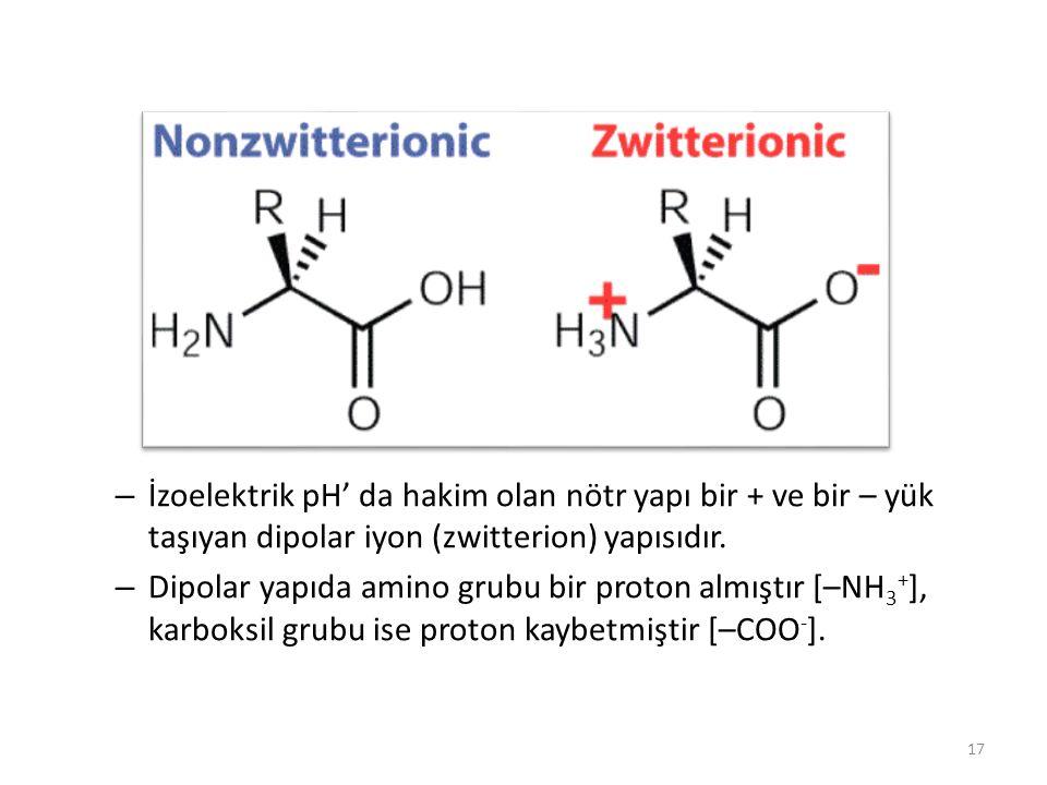 – İzoelektrik pH' da hakim olan nötr yapı bir + ve bir – yük taşıyan dipolar iyon (zwitterion) yapısıdır. – Dipolar yapıda amino grubu bir proton almı