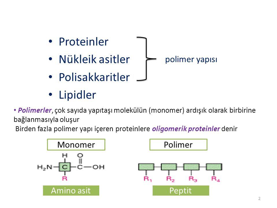 Proteinler Nükleik asitler Polisakkaritler Lipidler polimer yapısı Polimerler, çok sayıda yapıtaşı molekülün (monomer) ardışık olarak birbirine bağlanmasıyla oluşur Birden fazla polimer yapı içeren proteinlere oligomerik proteinler denir 2 Amino asitPeptit MonomerPolimer
