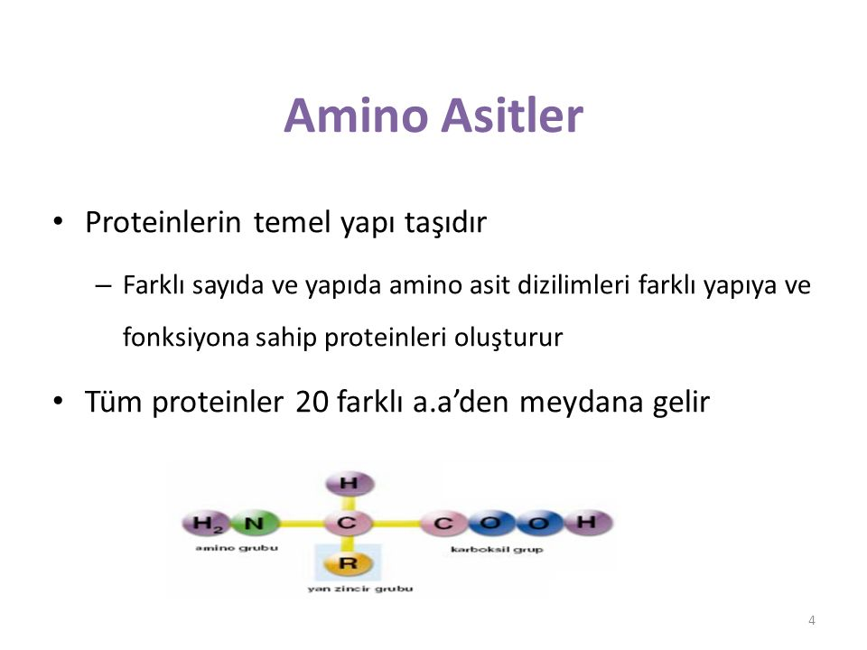 Amino asit (Yan zincir) 5