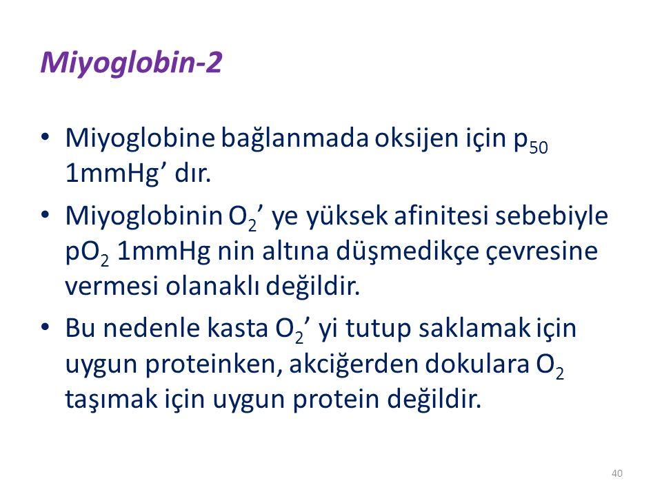 Miyoglobin-2 Miyoglobine bağlanmada oksijen için p 50 1mmHg' dır. Miyoglobinin O 2 ' ye yüksek afinitesi sebebiyle pO 2 1mmHg nin altına düşmedikçe çe