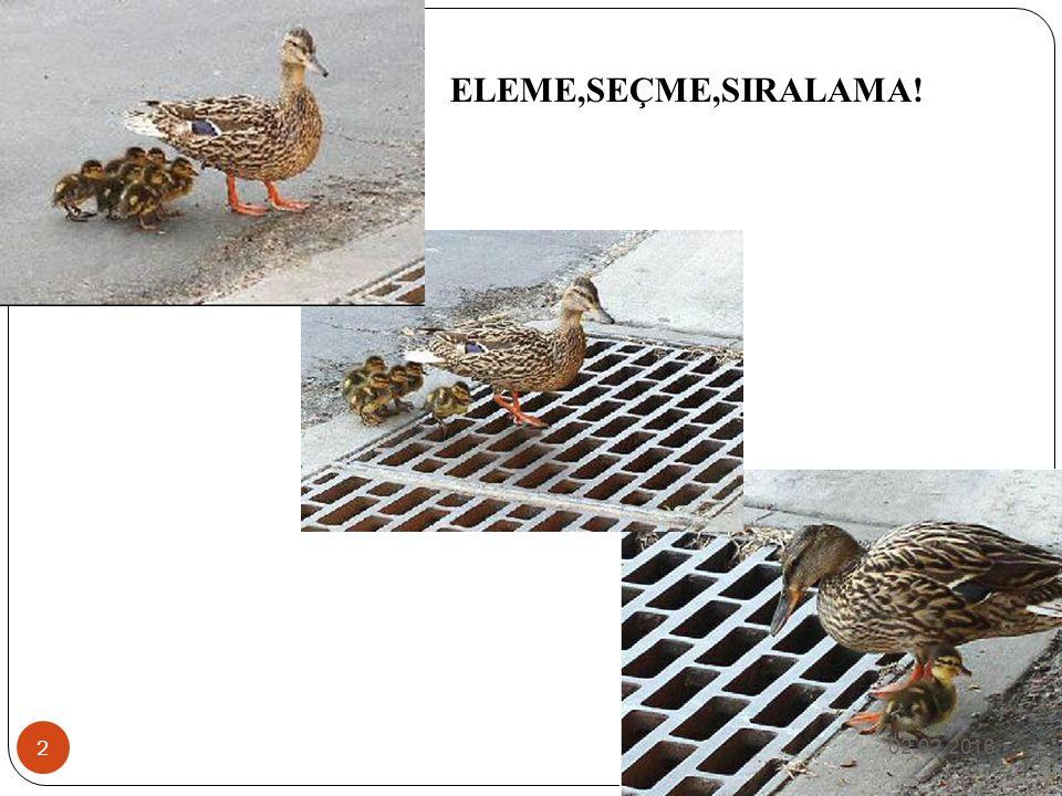 ELEME,SEÇME,SIRALAMA! 02.02.2016 2