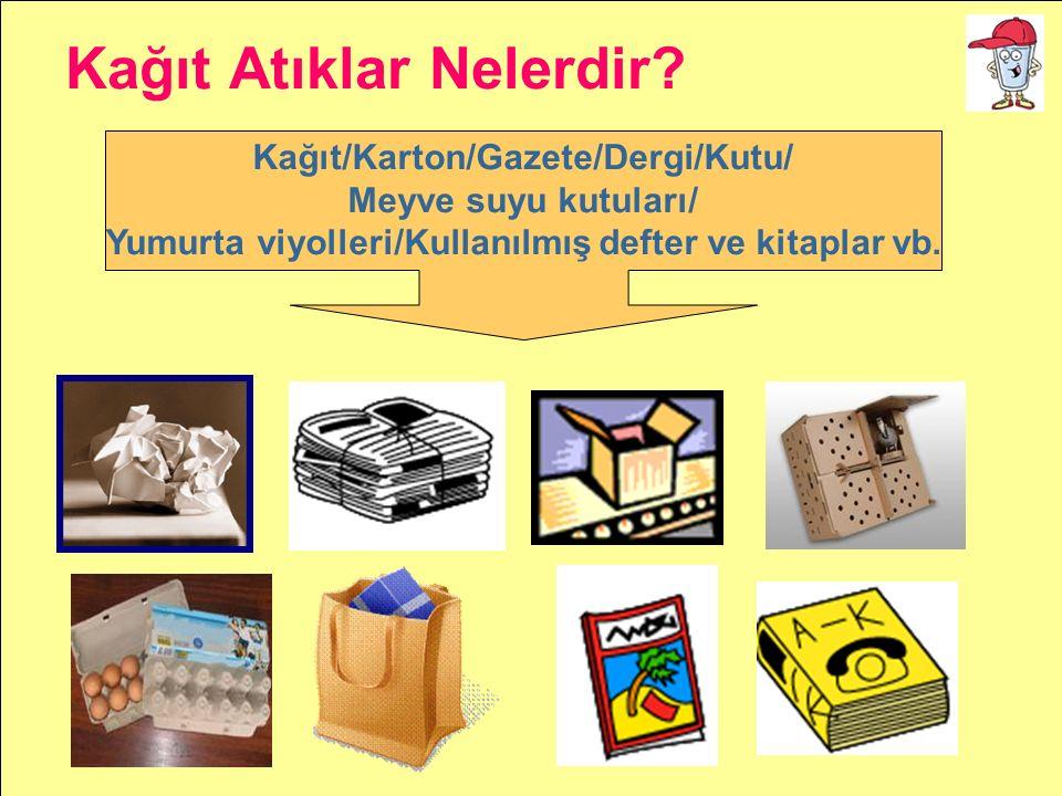 Kağıt/Karton/Gazete/Dergi/Kutu/ Meyve suyu kutuları/ Yumurta viyolleri/Kullanılmış defter ve kitaplar vb. Kağıt Atıklar Nelerdir?
