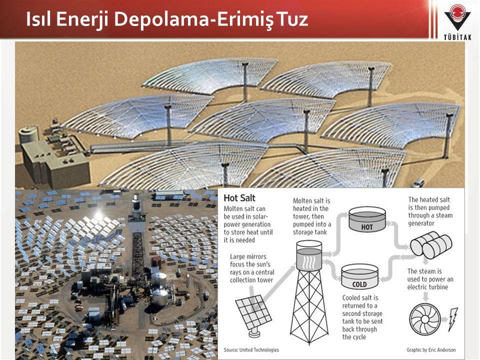 Biyolojik Enerji Depolama Bitkiler fotosentez yaparak güneş enerjisini depolamaktadırlar.
