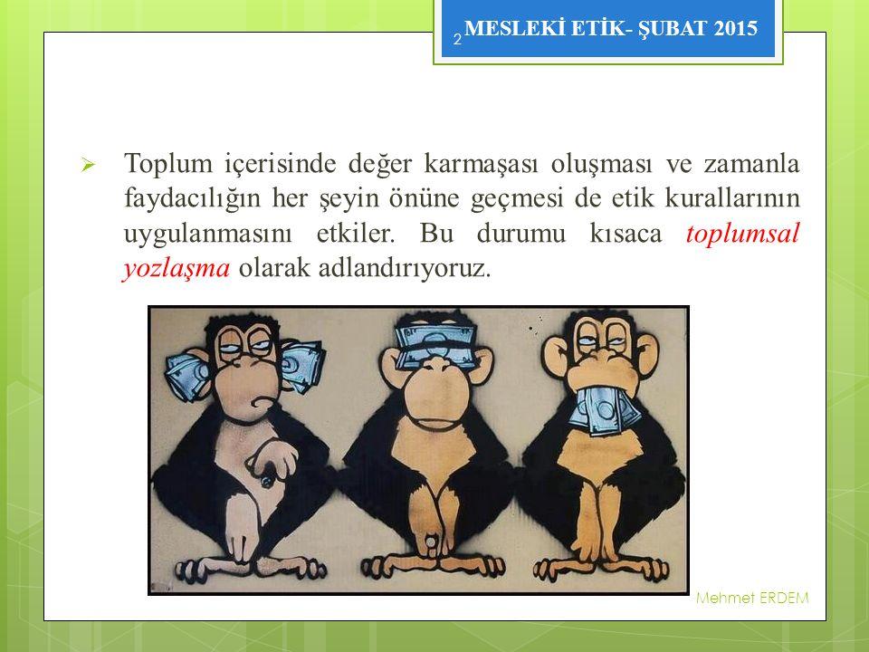 MESLEKİ ETİK- ŞUBAT 2015 Mehmet ERDEM 13
