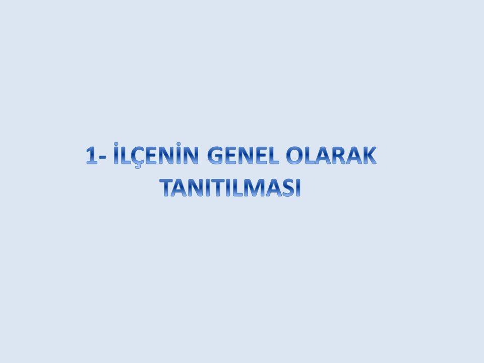 a) Tarihi ve Coğrafi Yapısı Milli Mücadelede düşmana karşı koyan ilk İller arasında yer almış, Alaca Mescit'te toplanan 41 kişilik heyet Balıkesir Kuva-yi Milliye sini kurarak Atatürk'ün önderliğinde yürütülen Milli Mücadeleye büyük destek vermiştir.