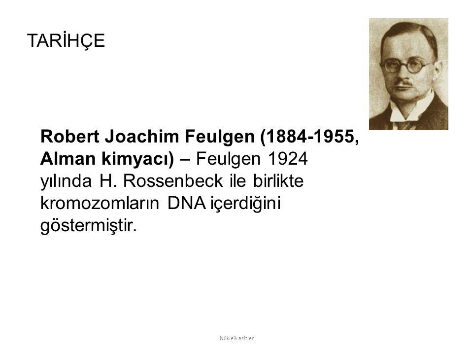 Robert Joachim Feulgen (1884-1955, Alman kimyacı) – Feulgen 1924 yılında H. Rossenbeck ile birlikte kromozomların DNA içerdiğini göstermiştir. TARİHÇE