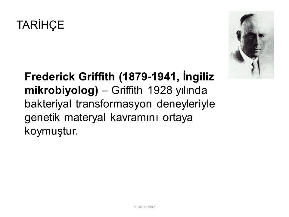 Frederick Griffith (1879-1941, İngiliz mikrobiyolog) – Griffith 1928 yılında bakteriyal transformasyon deneyleriyle genetik materyal kavramını ortaya