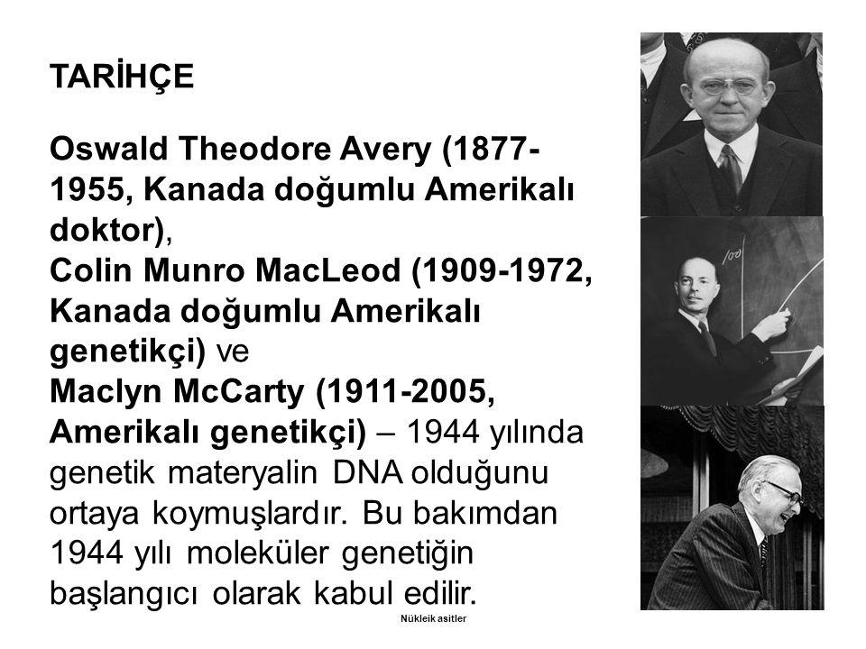 TARİHÇE Oswald Theodore Avery (1877- 1955, Kanada doğumlu Amerikalı doktor), Colin Munro MacLeod (1909-1972, Kanada doğumlu Amerikalı genetikçi) ve Maclyn McCarty (1911-2005, Amerikalı genetikçi) – 1944 yılında genetik materyalin DNA olduğunu ortaya koymuşlardır.