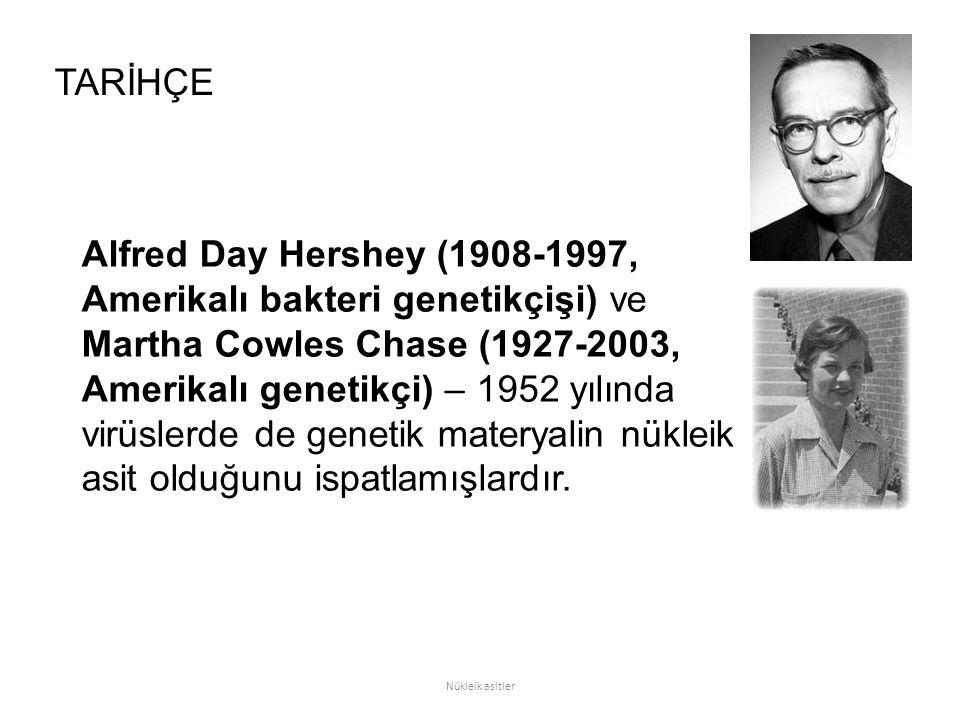 Alfred Day Hershey (1908-1997, Amerikalı bakteri genetikçişi) ve Martha Cowles Chase (1927-2003, Amerikalı genetikçi) – 1952 yılında virüslerde de genetik materyalin nükleik asit olduğunu ispatlamışlardır.