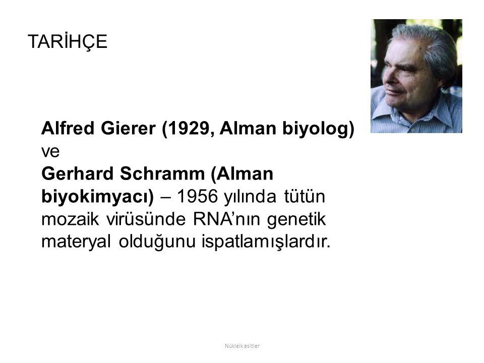 Alfred Gierer (1929, Alman biyolog) ve Gerhard Schramm (Alman biyokimyacı) – 1956 yılında tütün mozaik virüsünde RNA'nın genetik materyal olduğunu isp