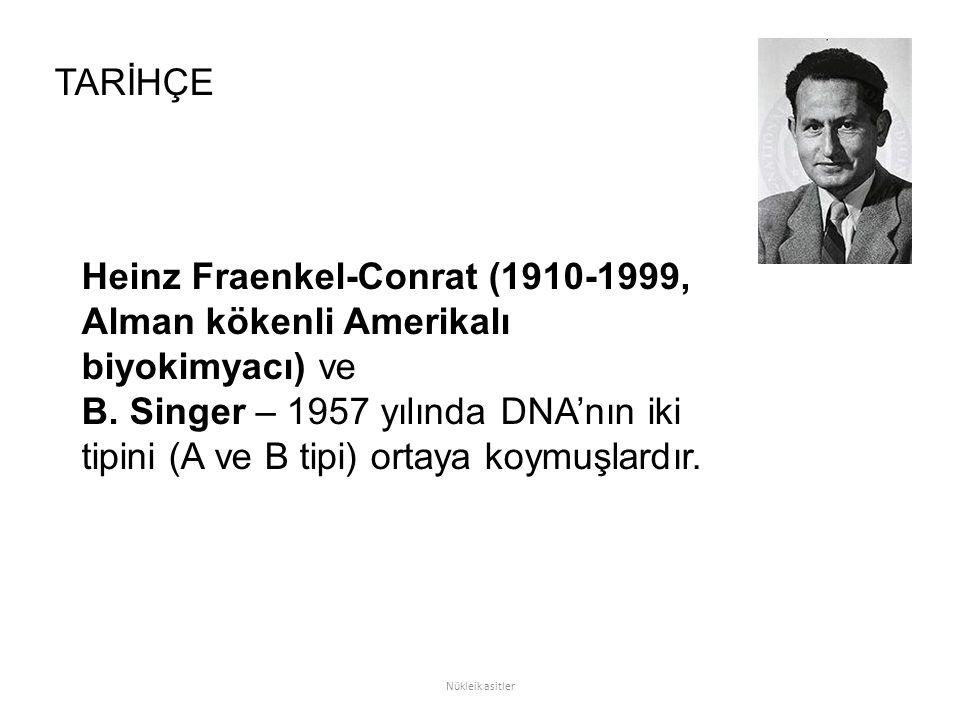Heinz Fraenkel-Conrat (1910-1999, Alman kökenli Amerikalı biyokimyacı) ve B. Singer – 1957 yılında DNA'nın iki tipini (A ve B tipi) ortaya koymuşlardı