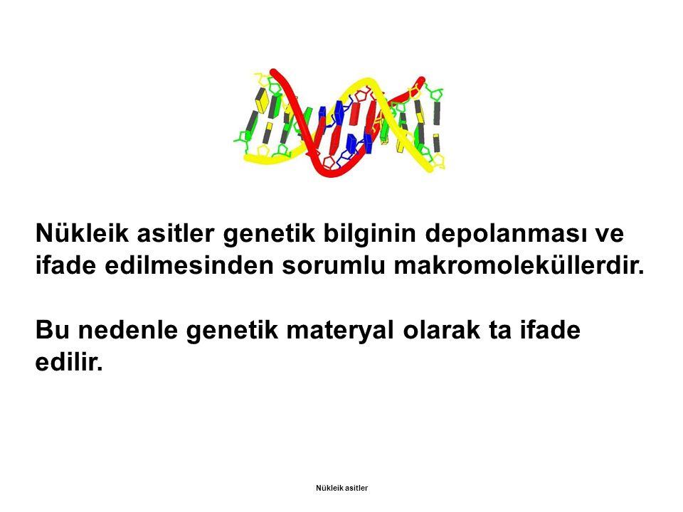 Nükleik asitler genetik bilginin depolanması ve ifade edilmesinden sorumlu makromoleküllerdir. Bu nedenle genetik materyal olarak ta ifade edilir. Nük