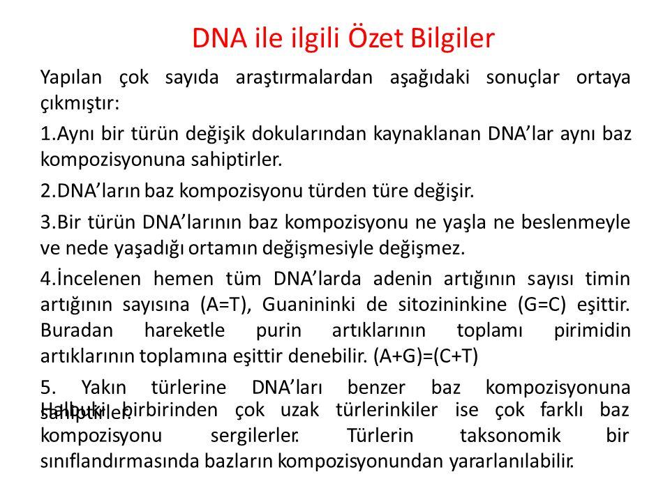 DNA ile ilgili Özet Bilgiler Yapılan çok sayıda araştırmalardan aşağıdaki sonuçlar ortaya çıkmıştır: 1.Aynı bir türün değişik dokularından kaynaklanan DNA'lar aynı baz kompozisyonuna sahiptirler.