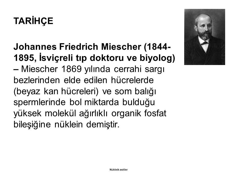 TARİHÇE Johannes Friedrich Miescher (1844- 1895, İsviçreli tıp doktoru ve biyolog) – Miescher 1869 yılında cerrahi sargı bezlerinden elde edilen hücrelerde (beyaz kan hücreleri) ve som balığı spermlerinde bol miktarda bulduğu yüksek molekül ağırlıklı organik fosfat bileşiğine nüklein demiştir.