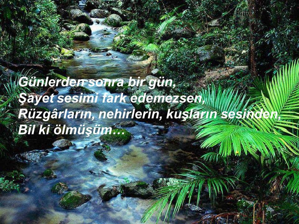 Günlerden sonra bir gün, Şayet sesimi fark edemezsen, Rüzgârların, nehirlerin, kuşların sesinden, Bil ki ölmüşüm…