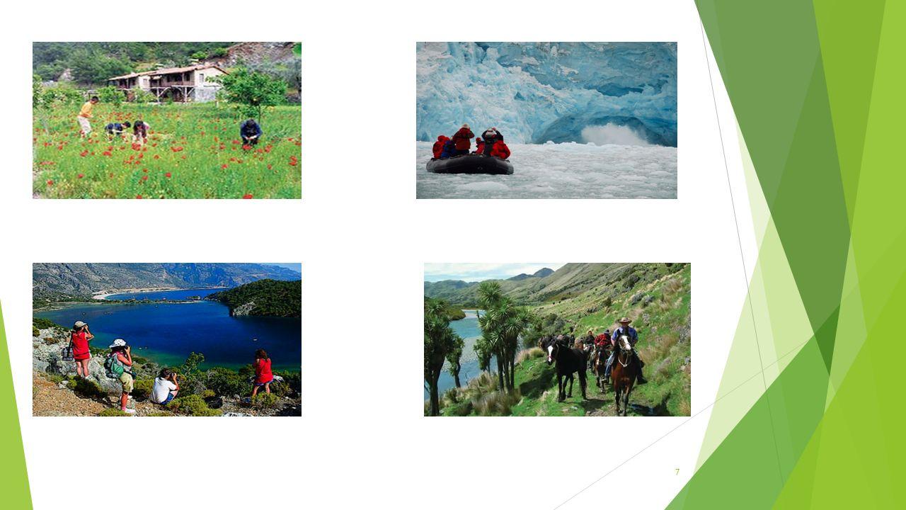 EKOTURİZMİN DOĞAYA DAYALI TURİZM İLE İLİŞKİSİ  Ekoturizm literatürde genellikle doğaya dayalı, doğaya yönelik veya doğa turizmi ile ayırt edilmesi olanaksız olarak tanımlanmaktadır.