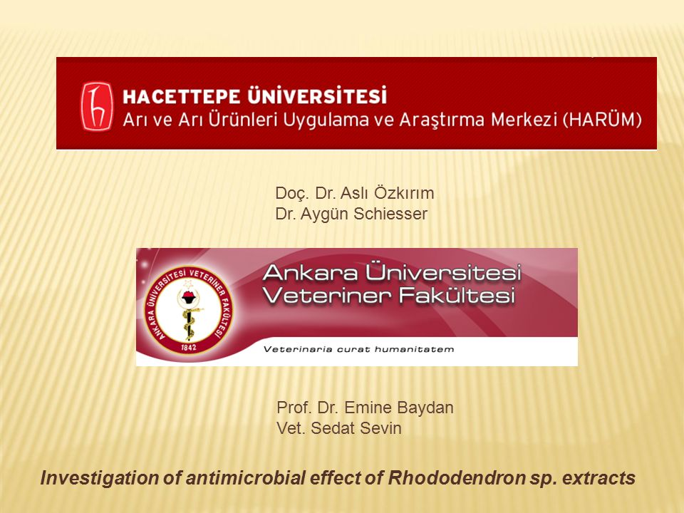 Doç. Dr. Aslı Özkırım Dr. Aygün Schiesser Prof. Dr. Emine Baydan Vet. Sedat Sevin Investigation of antimicrobial effect of Rhododendron sp. extracts