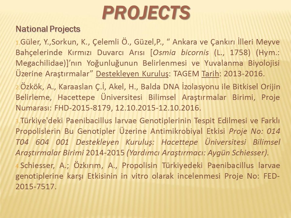 "PROJECTS National Projects 1. Güler, Y.,Sorkun, K., Çelemli Ö., Güzel,P., "" Ankara ve Çankırı İlleri Meyve Bahçelerinde Kırmızı Duvarcı Arısı [Osmia b"