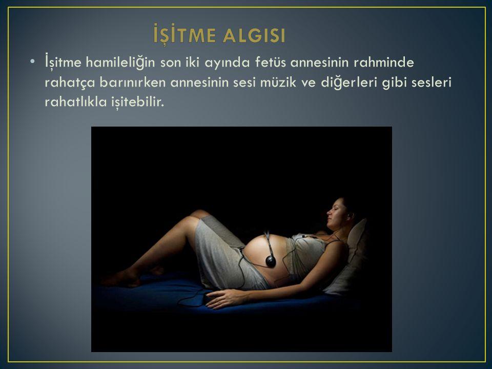 İ şitme hamileli ğ in son iki ayında fetüs annesinin rahminde rahatça barınırken annesinin sesi müzik ve di ğ erleri gibi sesleri rahatlıkla işitebilir.