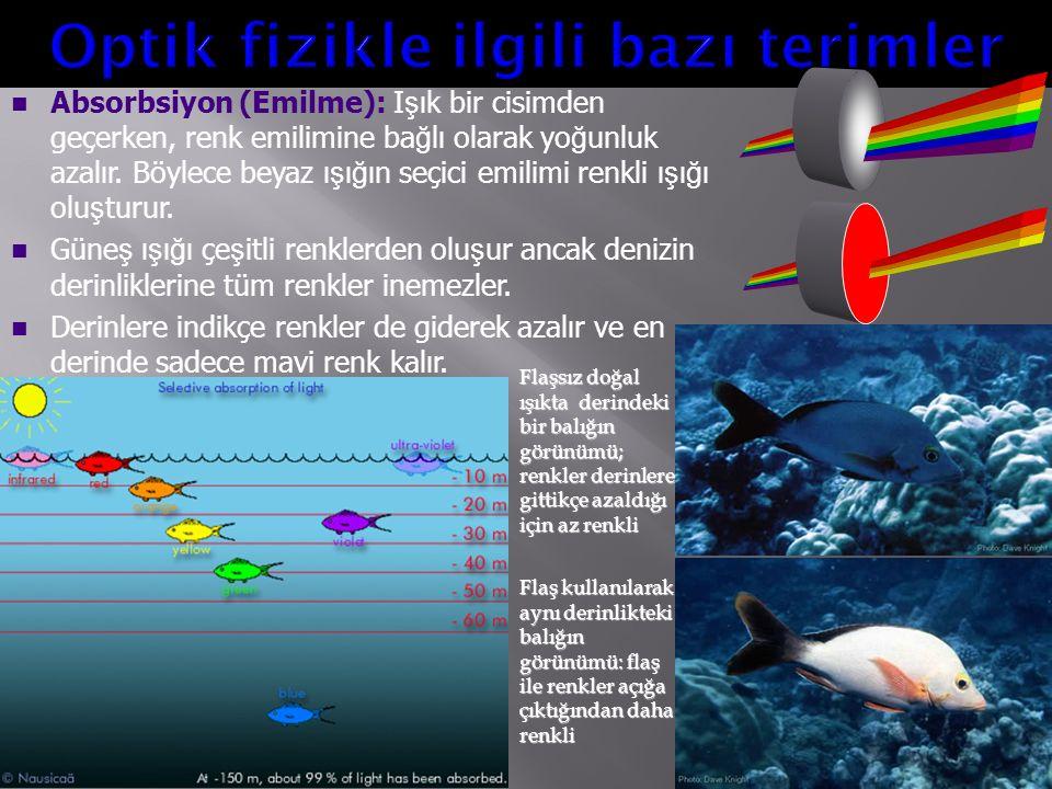 Absorbsiyon (Emilme): I ş ık bir cisimden geçerken, renk emilimine ba ğ lı olarak yo ğ unluk azalır. Böylece beyaz ı ş ı ğ ın seçici emilimi renkli ı