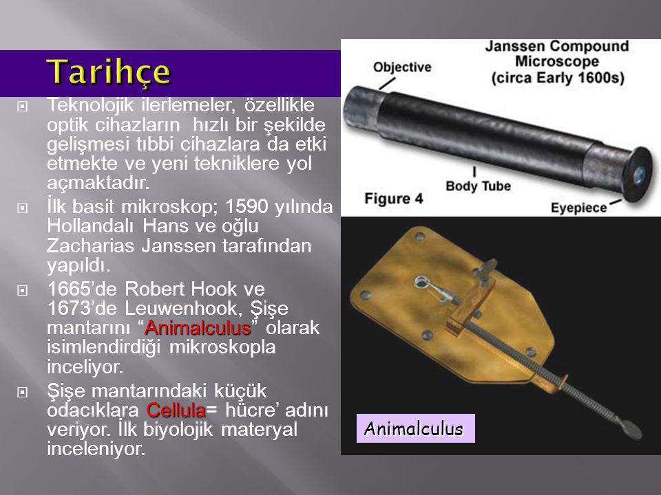 Binoküler mikroskop - Uniloküler mikroskop