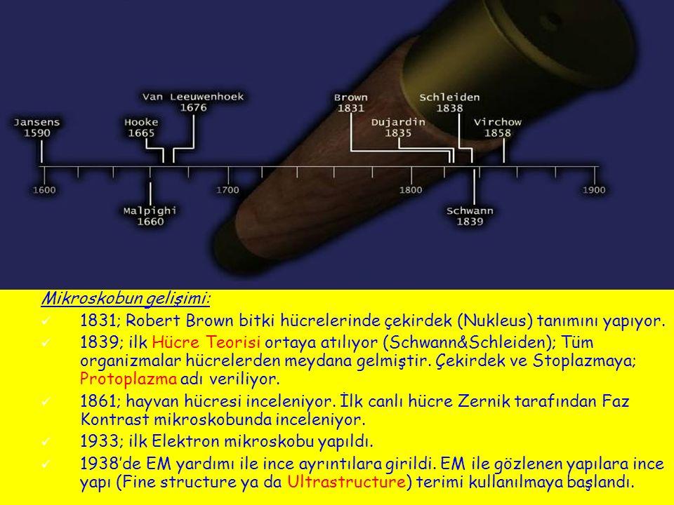 Mikroskobun gelişimi: 1831; Robert Brown bitki hücrelerinde çekirdek (Nukleus) tanımını yapıyor. 1839; ilk Hücre Teorisi ortaya atılıyor (Schwann&Schl