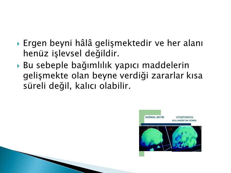  Ergen beyni hâlâ gelişmektedir ve her alanı henüz işlevsel değildir.  Bu sebeple bağımlılık yapıcı maddelerin gelişmekte olan beyne verdiği zararla