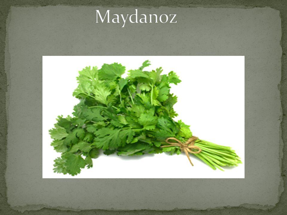 Yaklaşık 2.000 yıldır yetiştirilen ve insanlar tarafından kullanılan bir bitkidir.