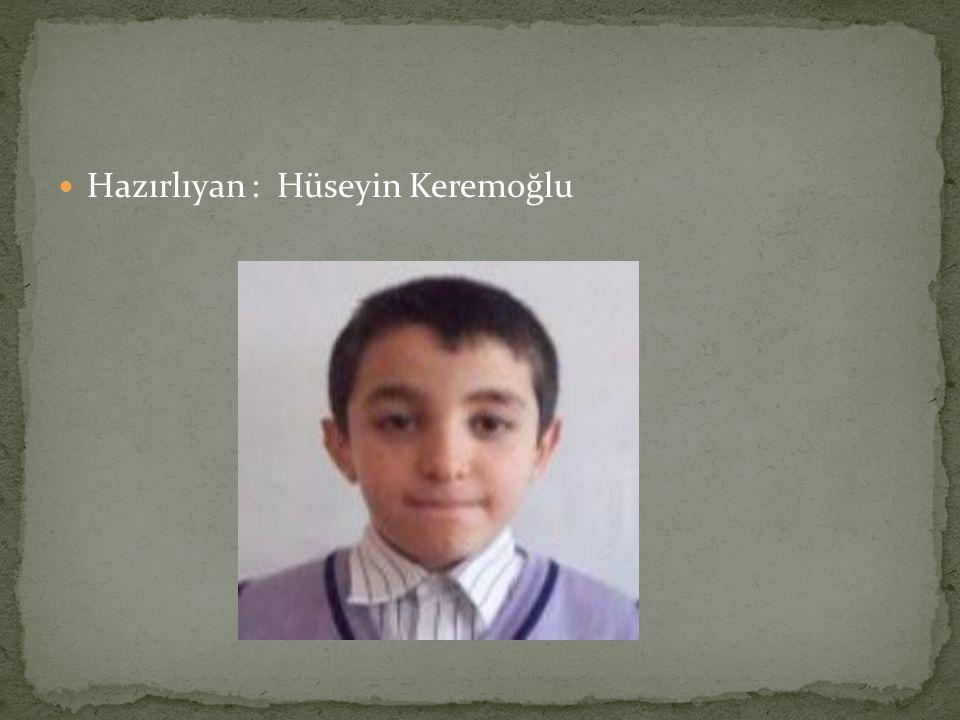Hazırlıyan : Hüseyin Keremoğlu