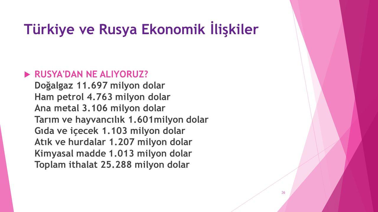 Türkiye ve Rusya Ekonomik İlişkiler  RUSYA DAN NE ALIYORUZ.