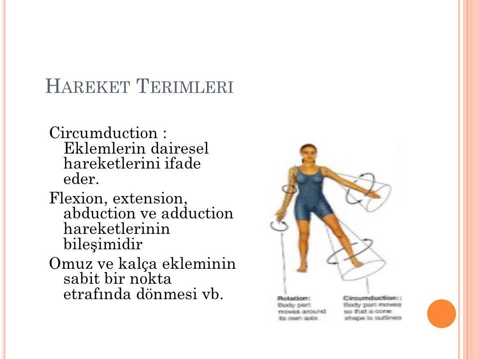 H AREKET T ERIMLERI Circumduction : Eklemlerin dairesel hareketlerini ifade eder.