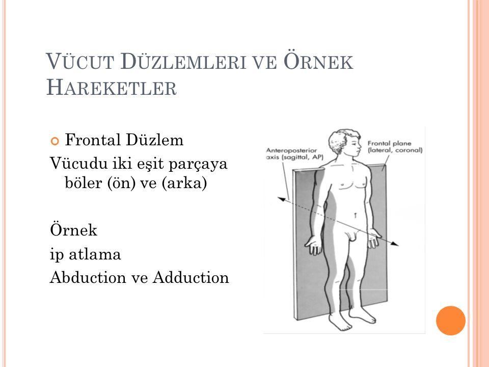 V ÜCUT D ÜZLEMLERI VE Ö RNEK H AREKETLER Frontal Düzlem Vücudu iki eşit parçaya böler (ön) ve (arka) Örnek ip atlama Abduction ve Adduction